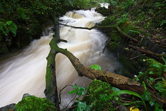 Stream (J Samuel) Tags: water wales river waterfall steam flowing neath melincourtfalls sgwdrhydyrhesg