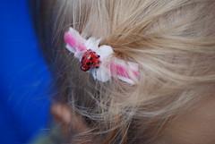 Spring Velvet Ladybug