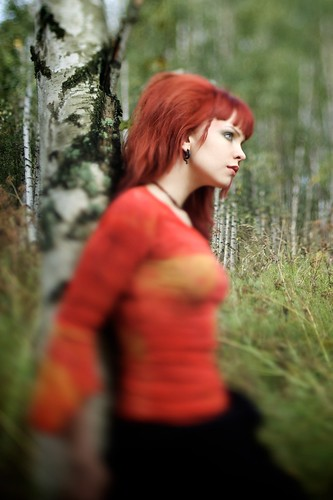 Minga against a birch