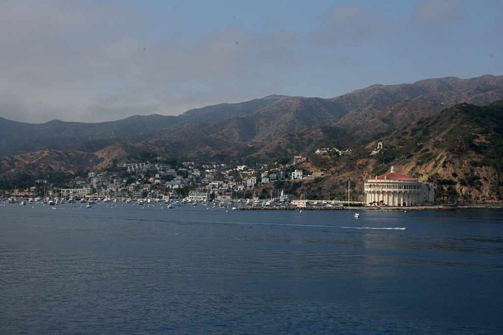 Morning on Catalina