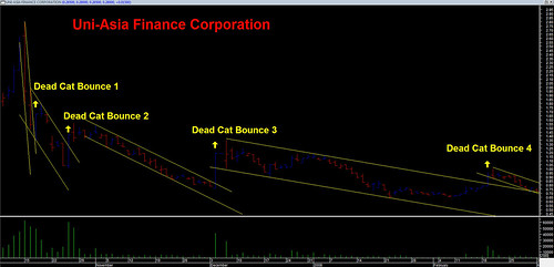 Uni-Asia - Dead Cat Bounce
