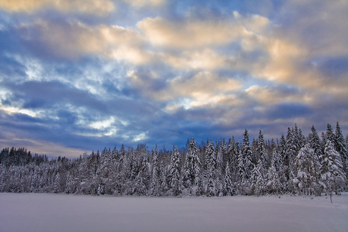 Winter Landscape at Tryvann