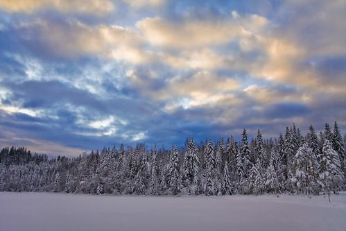 Winter Landscape at Tryvann
