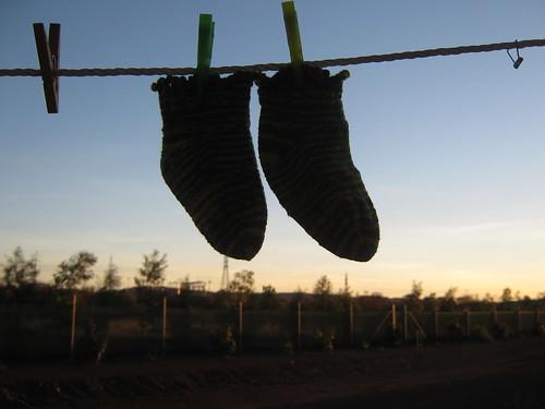 Bosko's Socks Dec 08 (4)