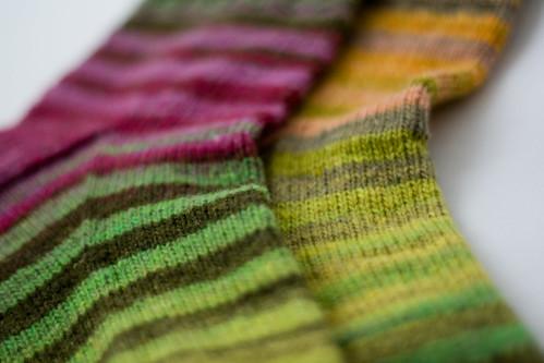 striped goodness