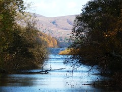 Through the trees at Luss (lfckenny) Tags: blue sky water landscape scotland pier scenery waves loch lomond luss