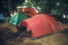 Camping de Golfo di Sogno : LES tentes