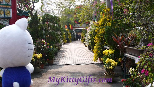 Hello Kitty's View of Avenue of Flowers in Hong Kong Orchid Trip