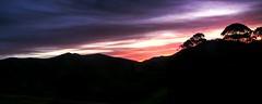 Magneta Sunset (wiifm) Tags: longexposure sunset sun black tree dark wairoa dusk hills hdr hawkesbay magneta 2560x1024