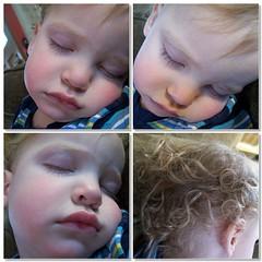 Sleeping Linus