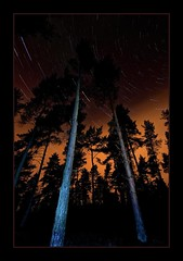 Celestial Woodland Spin (David Hannah) Tags: light night forest dark stars scotland woods pollution startrails bonnybridge
