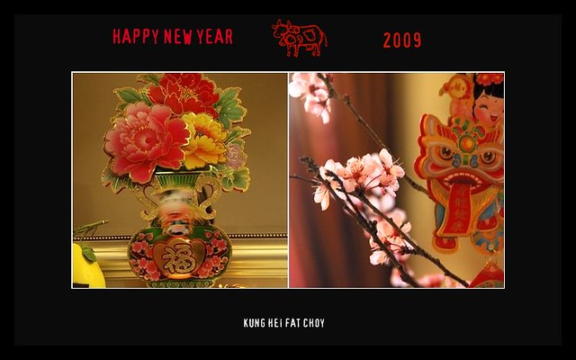 Chinese New Year 2009 by luunacy
