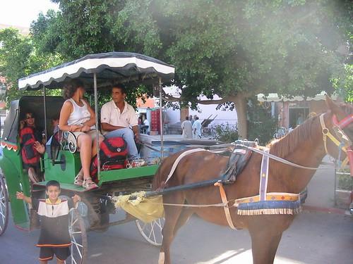 Met de paardjes naar het hotel