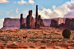 Lone Horse in Monument Valley (Jeff Clow) Tags: horse landscape monumentvalley theoldwest jeffrclow jeffclowphototours