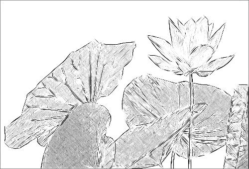plant clip art. Flower, plant clip art clip