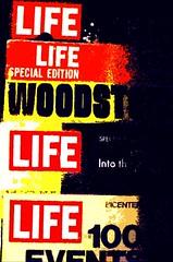 Life (moedonno) Tags: life bill rizzo