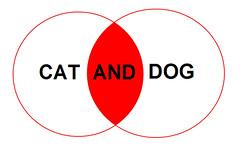cat AND dog boolean venn diagram