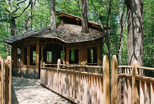 Mt Airy Tree House