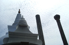 Thuparamaya (Dinesh Deckker (dineshdsd@gmail.com)) Tags: flowers statue forest temple monkey pond scenery king tank stupa buddhist srilanka arial dambulla anuradhapura srimahabodi jethawanaramaya anuradapura dutugamunu ruwanvelisaya thuparamaya nelikulama