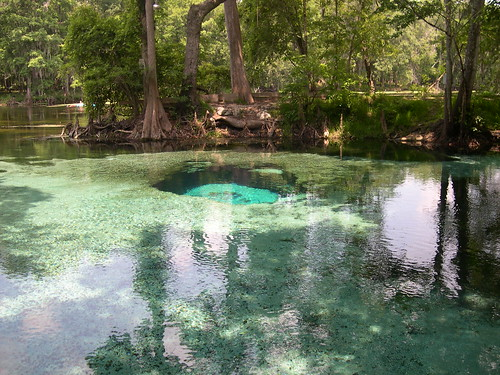 Devil's Eye Spring,Ginnie Springs,Florida Springs