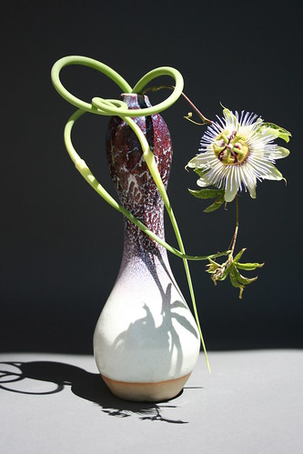 Freestyle Ikebana 2