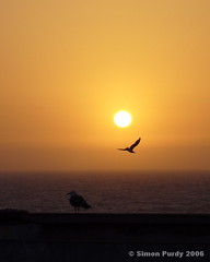 Sunset over the Atlantic, Essaouira, Morocco (Simon Purdy) Tags: sunset northafrica morocco maroc orient essaouira thebestofday gnneniyisi