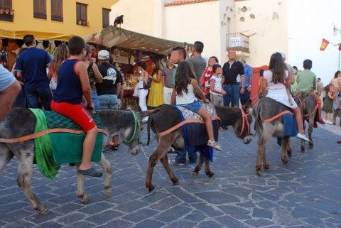 Mercado Medieval  V Edici¾n 2008 264