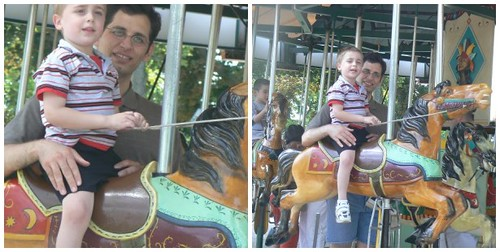Merry-go-round time at the zoo