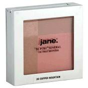 Jane Bronzer