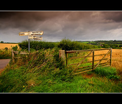 Signs Of A Wet Summer (Finntasia) Tags: road sign rural countryside corn gate village farm wheat country direction crop dorset chapeau marker fields miles signpost nettlecombe powerstock loders mywinners platinumphoto finntasia proudshopper landscapesofvillagesandfields spiritofphotography vanagram nigelfinn
