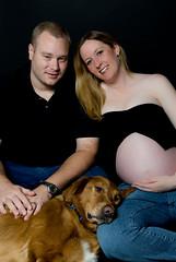 JillChazTiger (drjeeeol) Tags: family portrait dog pet goldenretriever jill tiger pregnancy pregnant belly triplets 2412weeks