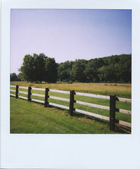 (jeffreywithtwof's) Tags: trees film jeff field fence polaroid one step pack 600 fields farms express hutton westernmassachusetts belchertown wmass jeffhutton jeffhuttonphotography jeffreyhutton
