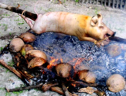 Siargao Island, Surigao del Norte roasting the pig on a spit cooking traditional lechon  Buhay Pinoy Philippines Filipino Pilipino  people pictures photos life Philippinen