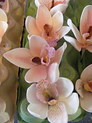 Sugar orchids. (sarah288) Tags: wedding orchids sugar