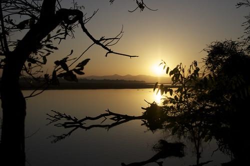 Luangwa sunrise