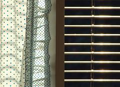vertical and horizontal (montel7) Tags: light window curtain finestra luce tenda bluedots