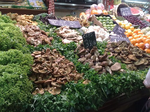 A Selection of Mushrooms