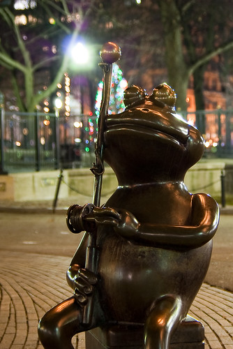 Frog Pond by night