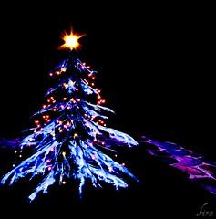 Christmas Tree Farm Bromley