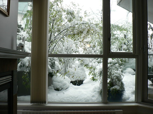 Our Patio with the most Snow we've ever seen on it