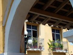 Archivo Tlacotalpan - Agosto 2008 (47)