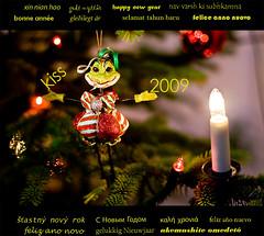 Kisses from ALF ........Happy new year 2009 (alfheidur magnus) Tags: christmas kiss frog 2009 happynewyear jól koss nýtt felizanonovo froskur kyssa gelukkignieuwjaar καλήχρονιά felizañonuevo bonneannée feliceannonuovo glücklichesneujahr selamattahunbaru godtnyttår šťastnýnovýrok navvarshkisubhkamna ár xinnianhao сновымгодом gleðilegtár buorreođđajahki