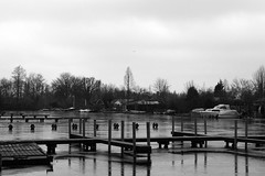 Ice port (Maurie Gloudie) Tags: winter lake haven meer bevroren zwart wit