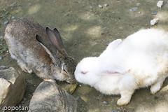 kiss!!
