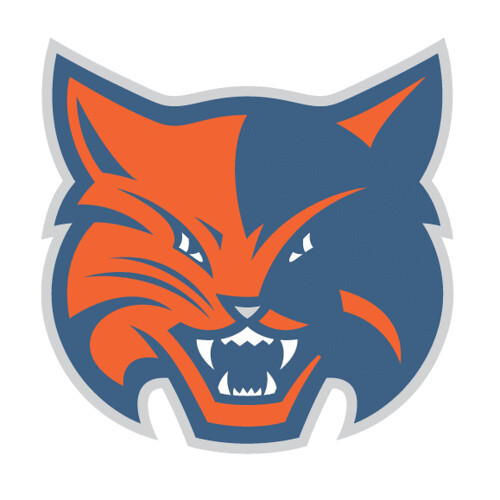 Charlotte Bobcats alt4 logo