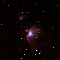 Orion nebula @ 200mm – 20090118 by fyngyrz