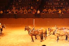 Buffalo Bill_0317 (Gilles Couteau) Tags: disney puteaux buffalobill disneyvillage