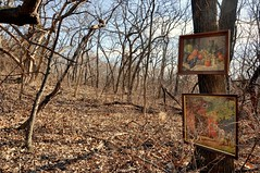 Art Show (ricko) Tags: pictures trees art woods saveme2 deleteme10 framed showing