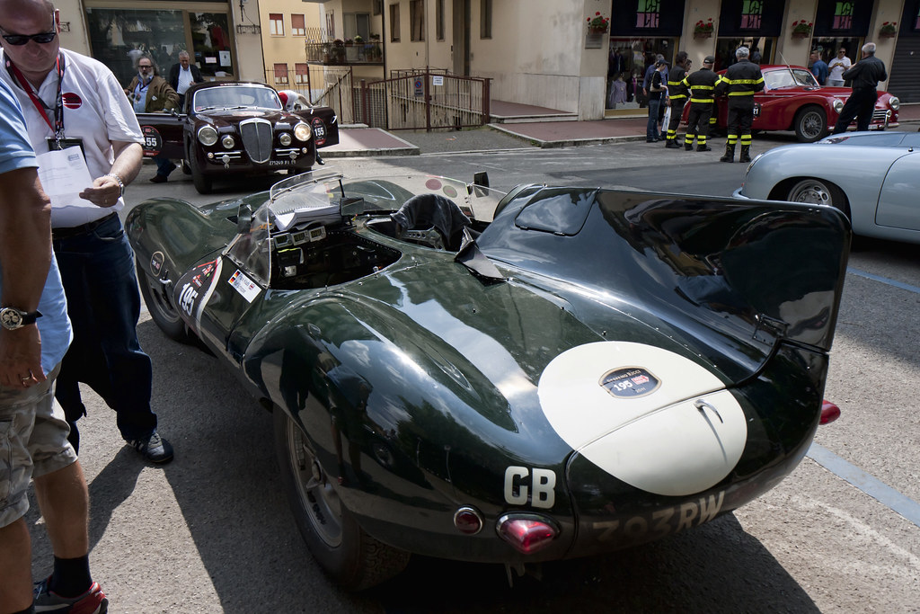 Jaguar D-Type - Forster (GB)