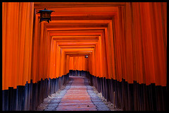 Torii at Fushimi-Inari Taisha, Kyoto (Eric Flexyourhead) Tags: red japan kyoto shrine gates shinto torii fushimiinaritaisha  zd  olympuse500 40150mm fushimiku aplusphoto